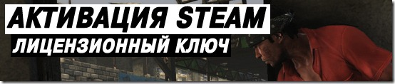 Max Payne 3 Ошибка активации в Steam