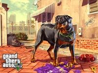 Арт Grand Theft Auto 5: Чоп