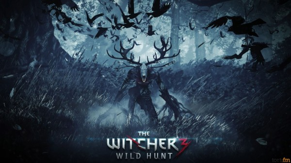 Дизайнер The Witcher 3 поведал некоторые подробности