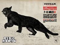Животные RGR - Cougar
