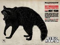 Животные RGR - Raccoon