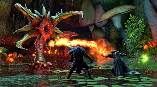 Почему в игре The Elder Scrools Online все говорят о мегасервере?