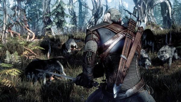 Охоту на Грифона можно будет открыть в игре  The Witcher 3: Wild Hunt