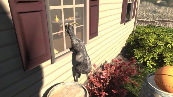 Симулятор камня может побить успех симулятора козла