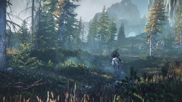 80 типов монстров представят угрозу для игроков The Witcher 3: Wild Hunt