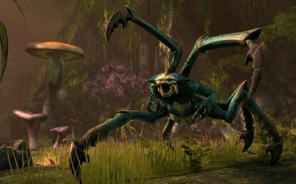 Чернотопье - это основная локация в игре The Elder Scrolls VI